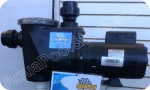 Waterway Champion pump 3/4 HP 110-230 volt standard efficiency